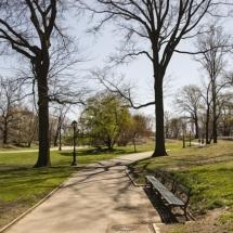 central-park-1457782_640