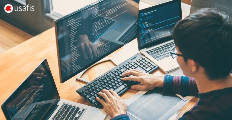 USAFIS: Desarrollador de Software